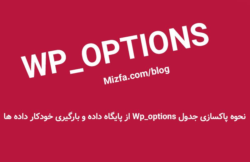 نحوه بهینه سازی و افزایش سرعت لود سایت به کمک جدول Wp_options از پایگاه داده
