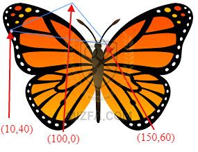 خروجی نمونه کد Polygon