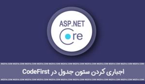 آشنایی با اتریبیوت Required در asp.net core