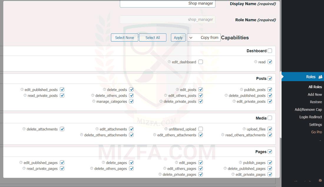 بخشی از قابلیت های افزونه WPFront User Role Editor